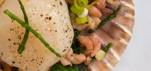Coquilles-sint jakobsschelp-scallops met garnalen uit de oven